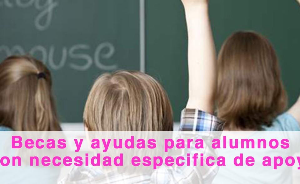 Becas y ayudas para alumnos con necesidad específica de apoyo educativo