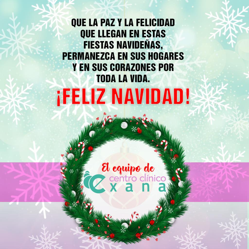 Felices Fiestas Exana